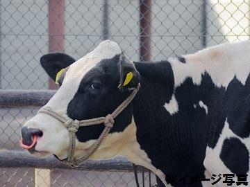 奈良県酪農農業協同組合-4
