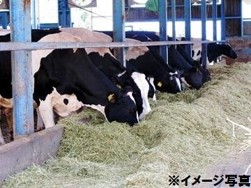 奈良県酪農農業協同組合-3