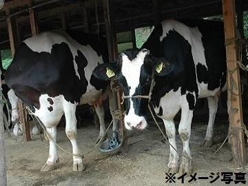 奈良県酪農農業協同組合-2