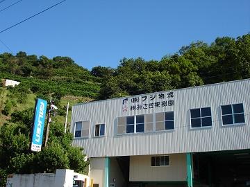 株式会社みさき果樹園-2