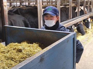 宝飯豊川酪農ヘルパー利用組合-4