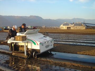 農業生産法人株式会社 I JAPAN-4