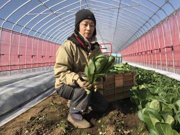 株式会社遠藤農園-2