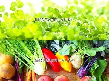 株式会社早坂園芸-3