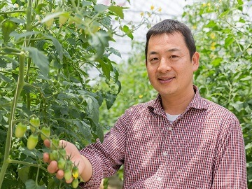 井出トマト農園-3