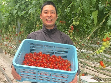 井出トマト農園-2