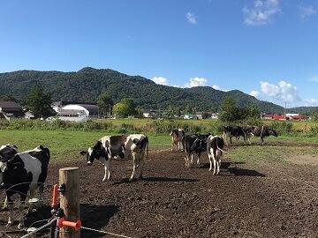 田村牧場-8