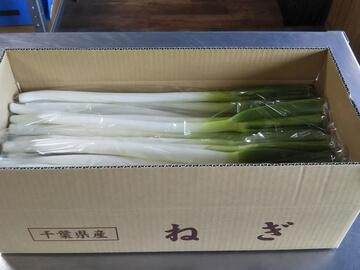 株式会社石橋農園-6