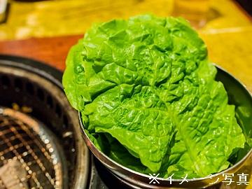 千葉県旭市×施設野菜/法人【0227】