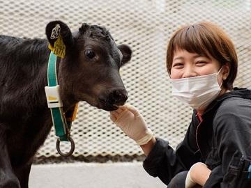 北海道×酪農牧場スタッフ×法人【0559】