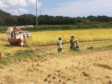 石川農園-6