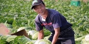 Takehiro's Farm