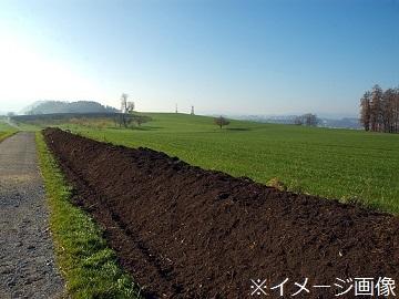 むかわ町×施設野菜/個人-top