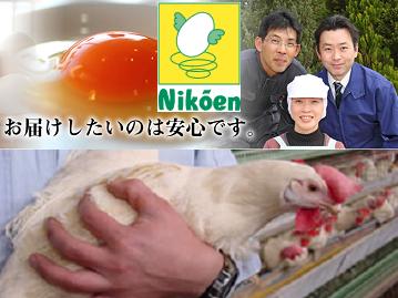 nikoen-top