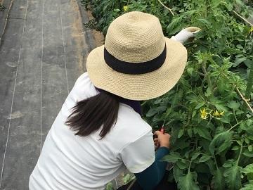 平成30年度ふくしまの未来を創る新・農業人育成・確保支援事業-6