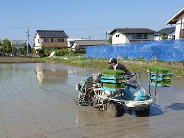 株式会社森島農園-1