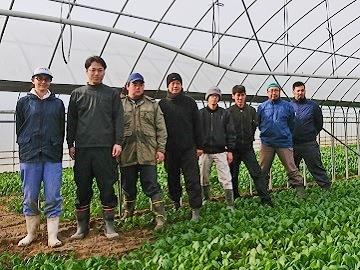 株式会社森島農園-4