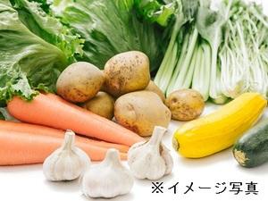 小海町×野菜/個人-top