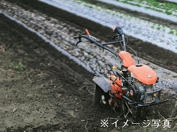 中央区×営業/法人【31882】-2