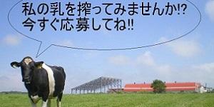 有限会社奥山農場