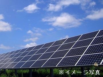 中津川市×野菜・花/法人【31912】-top