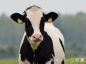 袋井市×酪農ヘルパー/法人【31931】-top