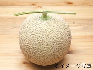 神戸市×果樹・野菜/法人【32005】-top