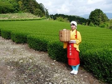 吹木茶農業協同組合-top
