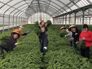 丸宏農園-8