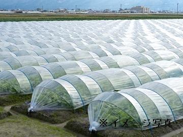 多摩市×福祉(農作業指導者)/法人【32062】-1