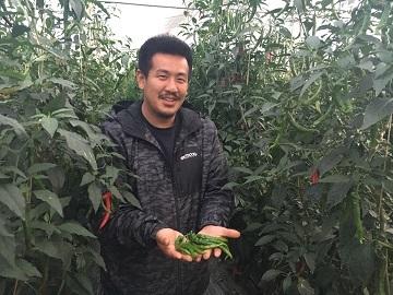佐原農園株式会社-top