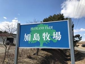 加島 富浩(加島牧場)-top