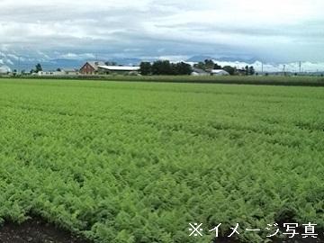 おいらせ町×野菜/法人-top