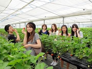 株式会社岡山フルーツ農園-1