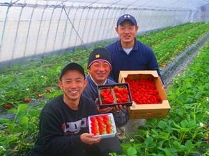 株式会社岡山フルーツ農園-top