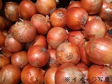 町田農園-1