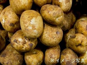 町田農園-top