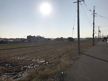 村瀬農産-8