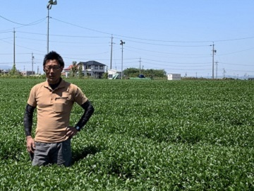 久保田製茶-1