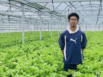 野菜工房たなべ-7