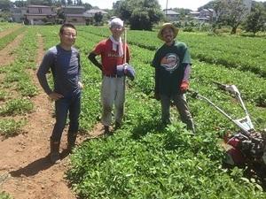 三条市青年就農者育成等支援事業募集-top