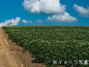 置戸町×牧場/個人【32203】-top
