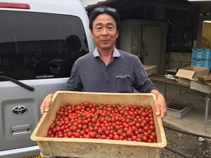 増山農園-top