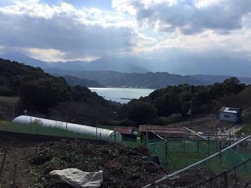 新居浜市×稲作/法人【2771】-4