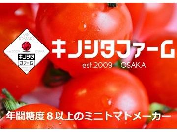 kinoshita-top2