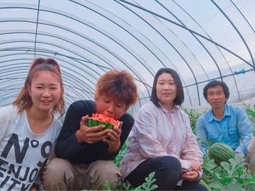 鍋島農園-top