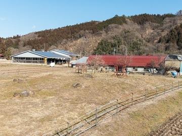 関牧場-6
