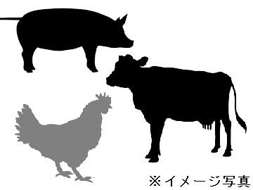 大阪府×精肉加工/法人【32310】-top