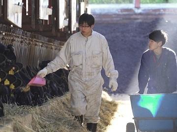北海道×肉牛牧場スタッフ/法人【32367】-3