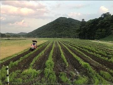 株式会社丹波篠山かまい農場-8